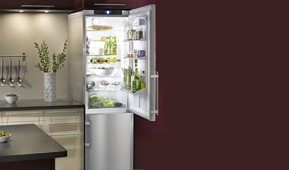 Choose an Energy Efficient Refrigerators