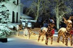 Select Energy Efficient Holiday Led Lights
