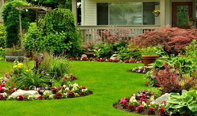 energy-efficient-landscaping